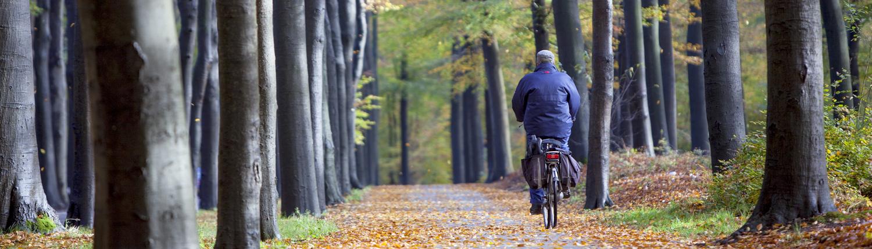 Enclave-tours-fiets_bos